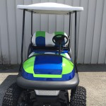 2010 Club Car Precedent 48 Volt Custom Golf Cart 2